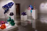 Emma Wiitamaki, Spring 2020 BFA #2 Exhibition by Emma Wiitamaki